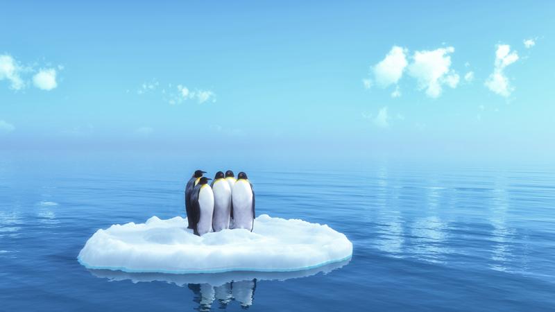Découvrez l'Antarctique
