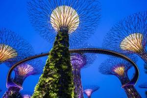 a-singapour-gardens-by-the-bay-arbres-artificiels-3-go