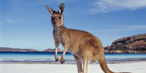 ASIA AUSTRALIE
